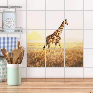 Klebefliesen - Savanna Giraffe