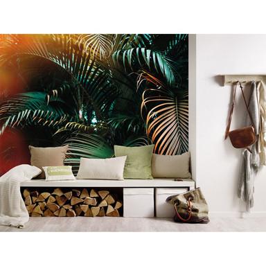 Livingwalls Fototapete Designwalls Jungle Colour Palmen - Bild 1