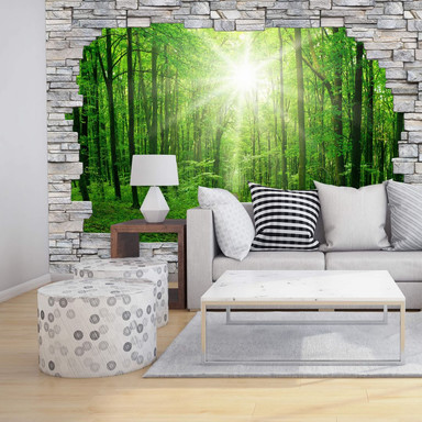 3D Fototapete Sunny Forest Mauer
