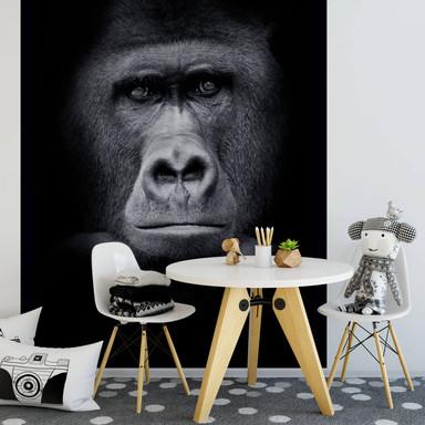 Fototapete Gorilla - 192x260cm - Bild 1