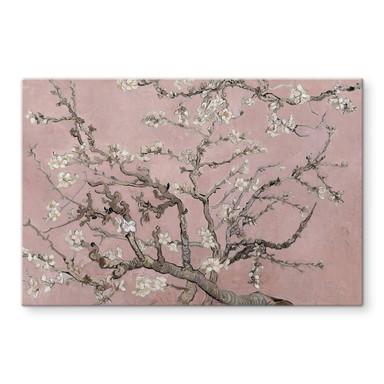 Glasbild van Gogh - Mandelblüte Rosé
