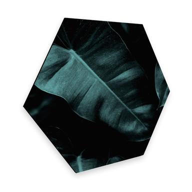 Hexagon - Alu-Dibond Kubistika - Jungle