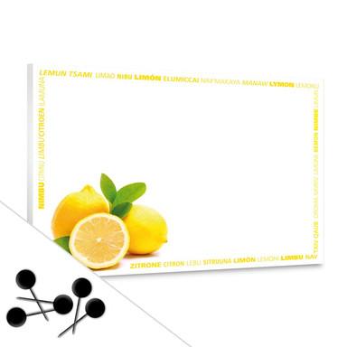 Pinwand Zitronen Multikulti inkl. 5 Pinnadeln