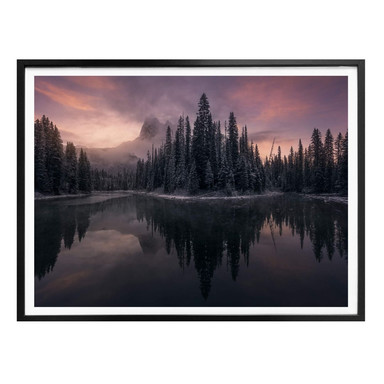 Poster Castan - Fairytale Forest