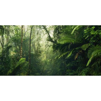 Fototapete Tropenwelten
