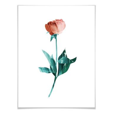 Poster Goed Blauw - Die Rose
