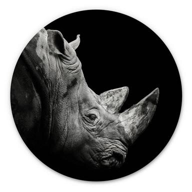 Alu-Dibond Meermann - Das Nashorn - Rund