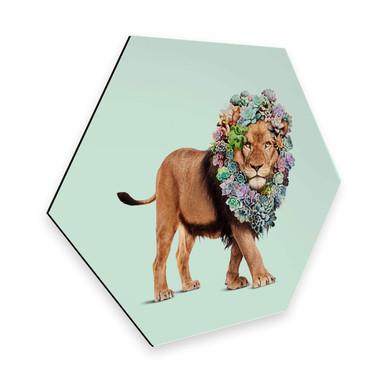 Hexagon - Alu-Dibond Loose - Succulent Lion