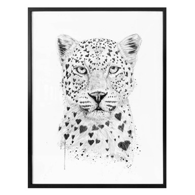 Poster Solti - Liebevoller Leopard