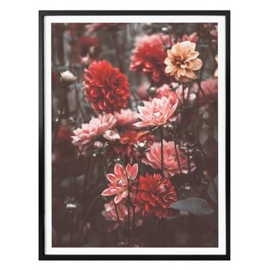 Poster Annie - Sommerblüten