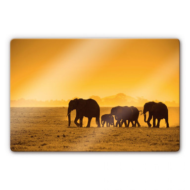 Glasbild Elefantensilhouetten