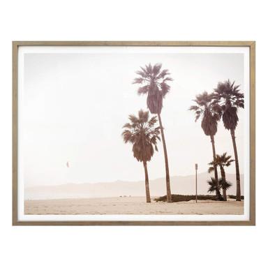 Poster Palmen