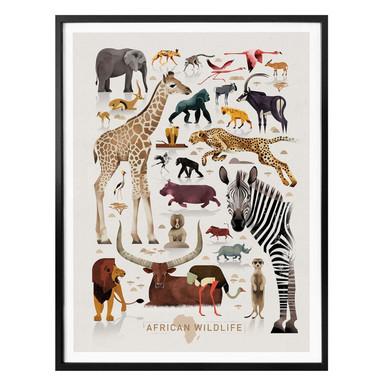 Poster Braun - Africa