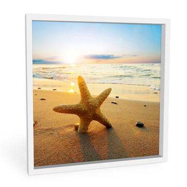 Wandbild Seestern im Sand - quadratisch