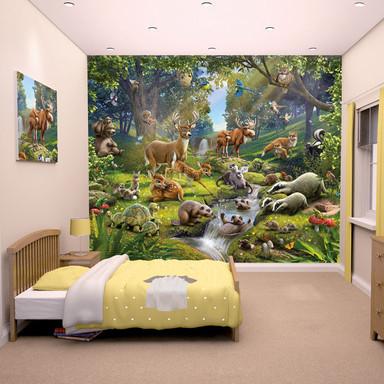 Fototapete Wald-Abenteuer - Bild 1
