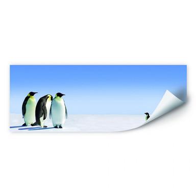 Wallprint Penguin - Panorama