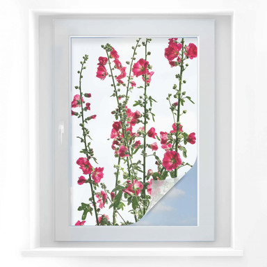 Sichtschutzfolie Kadam - Flora Stockrose