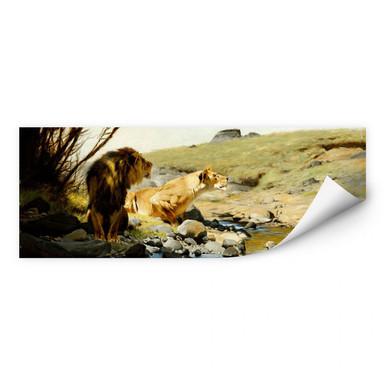 Wallprint Kuhnert - Ein Löwe und eine Löwin an einem Bach