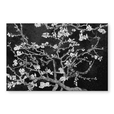 Acrylglasbild van Gogh - Mandelblüte - schwarz