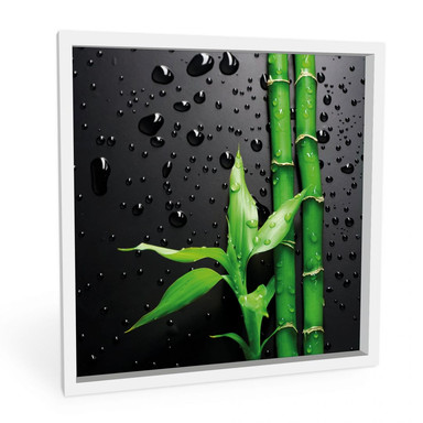 Hartschaumbild Bamboo Over Black - quadratisch