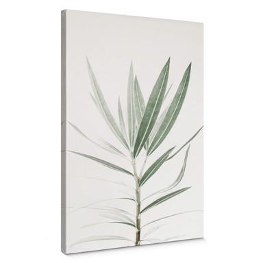Leinwandbild Sisi & Seb - Oleander