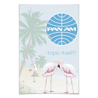 Poster PAN AM - Flamingobucht