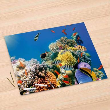 Folienbogen (120x80cm) - Coral Reef