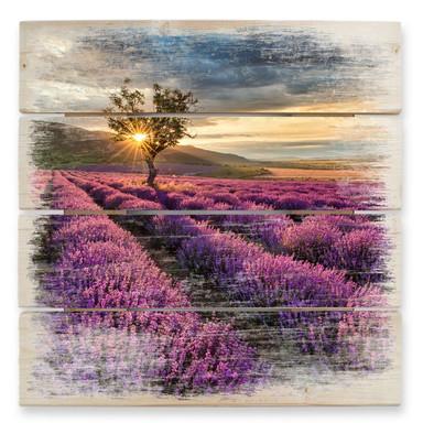 Holzbild Lavendelblüte in der Provence