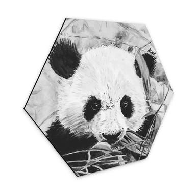 Hexagon - Alu-Dibond Toetzke - Pandabär