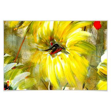 Poster Niksic - Der Raum voller Sonne und Freude