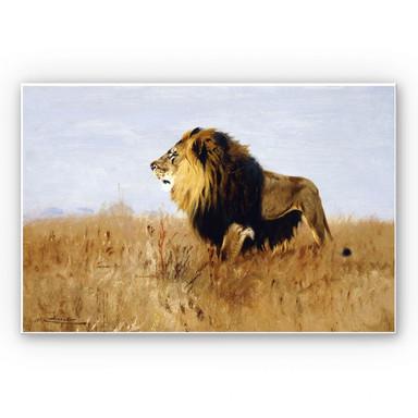 Hartschaumbild Kuhnert - Löwe auf der Suche nach Beute