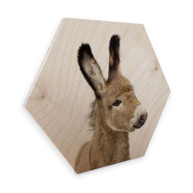 Hexagon - Holz Birke-Furnier Sisi & Seb - Baby Esel