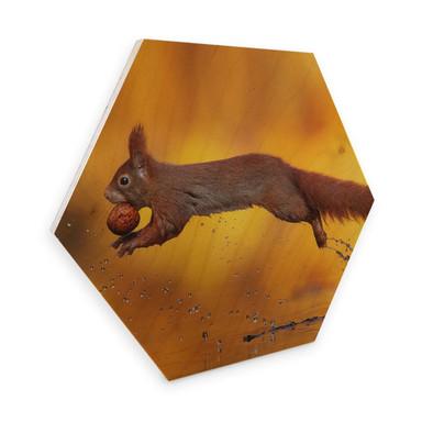 Hexagon - Holz Birke-Furnier van Duijn - Eichhörnchen im Sprung