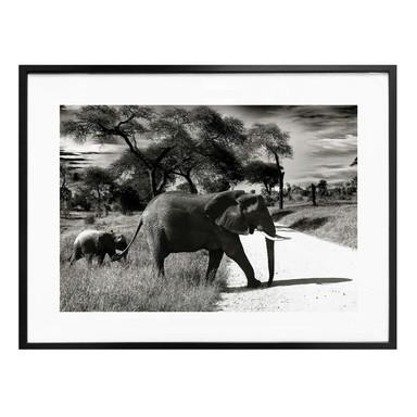 Poster Der Elefant und sein Kind