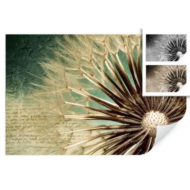 Wallprint Pusteblumen-Poesie