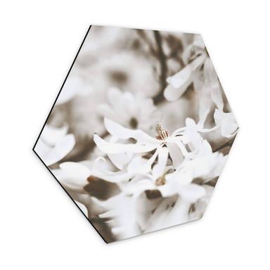 Hexagon - Alu-Dibond Annie - Jasmin