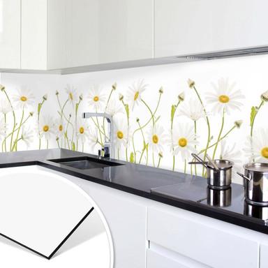 Küchenrückwand - Alu-Dibond - Disher - Ox eye Daisies
