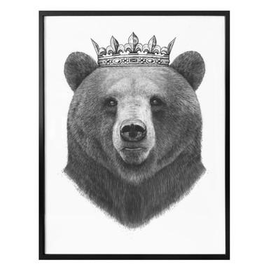 Poster Korenkova - King Bear