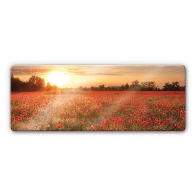 Glasbild Mohnfeld im Sonnenuntergang Panorama
