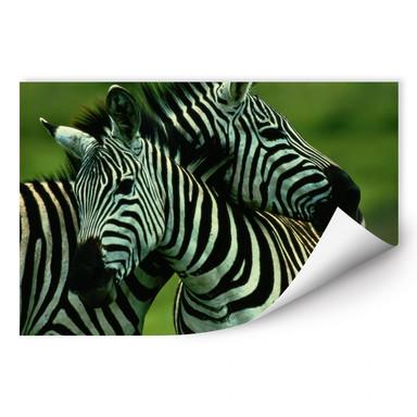 Wallprint NG Zebra Paar