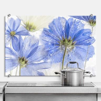 Spritzschutz Disher - Blue Frozen