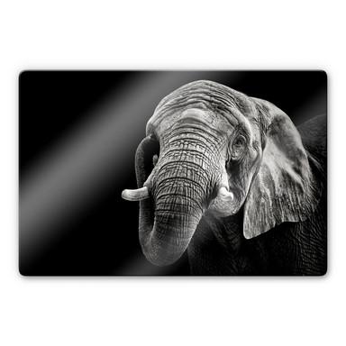 Glasbild Meermann - Der Elefant