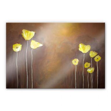 Acrylglasbild Melz - Gelber Mohn