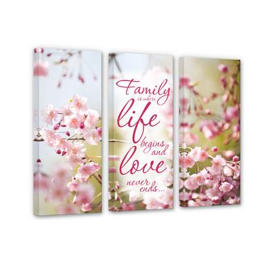 Leinwandbild Family is where Life begins (3-teilig)