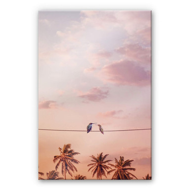 Acrylglasbild Loose - Hummingbirds in Love