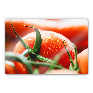 Glasbild Fresh Tomato