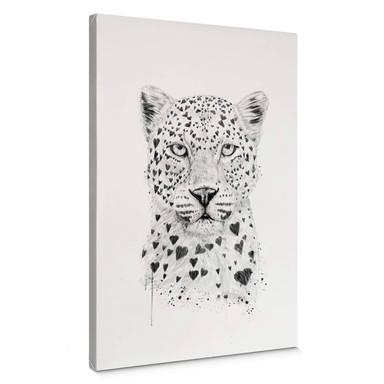 Leinwandbild Solti - Liebevoller Leopard