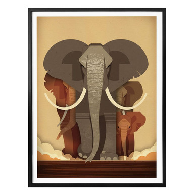 Poster Braun - Elephants