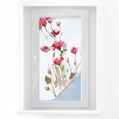 Sichtschutzfolie Illustrierte Wildblume - Panorama