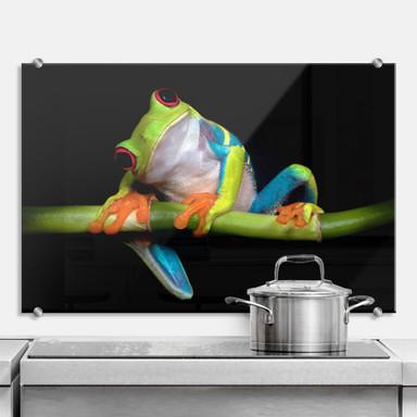 Spritzschutz Valverde - Green Frog
